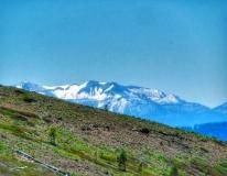 Photo-2011-06-30-15-28-21_8082